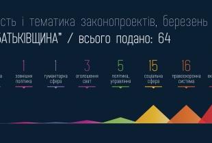 """Законопроекти """"Батьківщини"""" за березень 2013"""